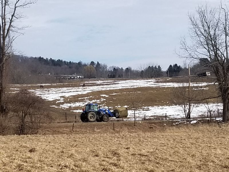 A tractor bringing hay to the livestock near Hurd's Corner.